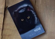 Nine Black Cats by Neemdog and Lorenzo