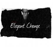 Elegant Change by Dan Alex