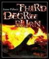 Third Degree Burn by Jason Palter